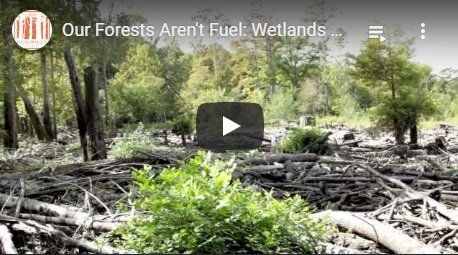 2013-12-09-biomassmurder-org-our-forests-aren-t-fuel-wetlands-up-in-smoke-dogwood-alliance-english