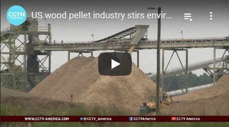 2014-11-18-biomassmurder-org-us-wood-pellet-industry-stirs-environmental-controversy-cgtn-america-english