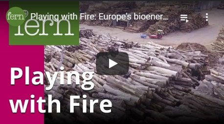 2017-11-28-biomassmurder-org-playing-with-fire-europes-bioenergy-future-english