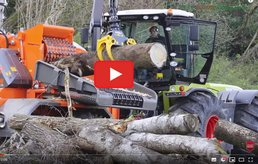 BioMassMurder Research Logging Whole Trees for Woody Biomass