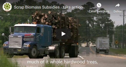 biomassmurder-research-subsidies-video