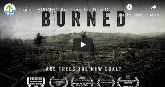 biomassmurder-research-sustainability-video